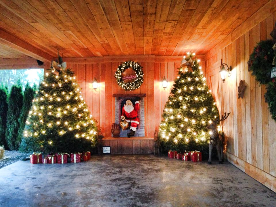Fraser Valley Christmas Bucket List