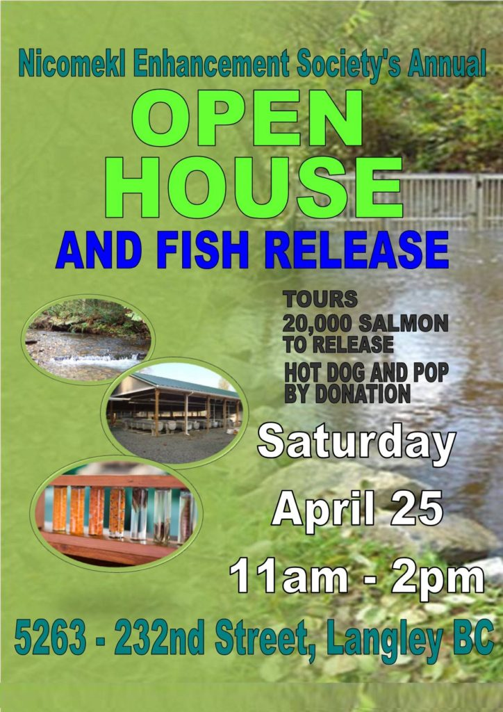Nicomekl Enhancement Society's Annual Open House and Fish Release
