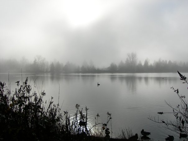 Mill Lake in the morning